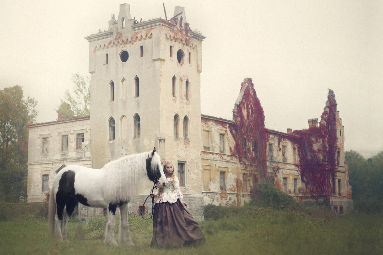 gałów konie
