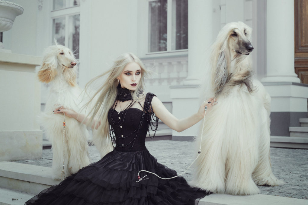 sesja baśniowa, sesja bajkowa, sesja fantasy, sesja gotycka